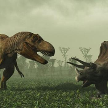 Hallazgo de cráneo fosilizado permite medir la inteligencia de los dinosaurios