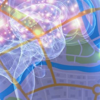 Depresión podría afectar oscilación cerebral que actúa como GPS interno
