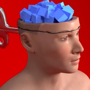 Inquietante estudio indaga cómo parásito ejercería control mental en humanos para correr mayores riesgos
