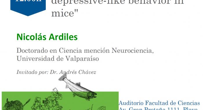 14. Nicolás Ardiles 13-09-2019