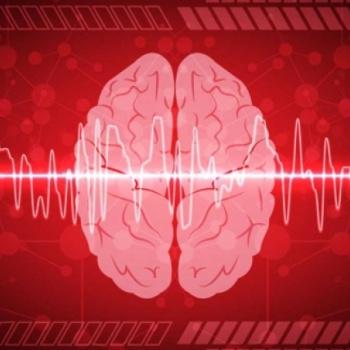 Reviviendo el cerebro: nuevos hallazgos científicos cuestionan el límite entre la vida y la muerte.