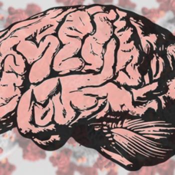 COVID-19 puede enfermar el cerebro